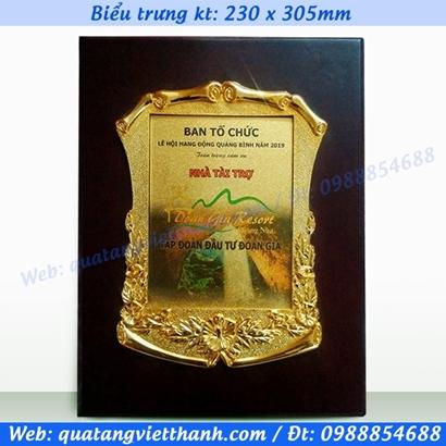 Biểu trưng khung mạ vàng kt230x305mm