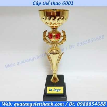 Cúp thể thao 6001